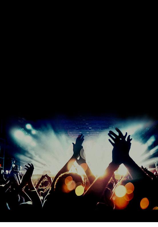 4 concert crowd.JPG