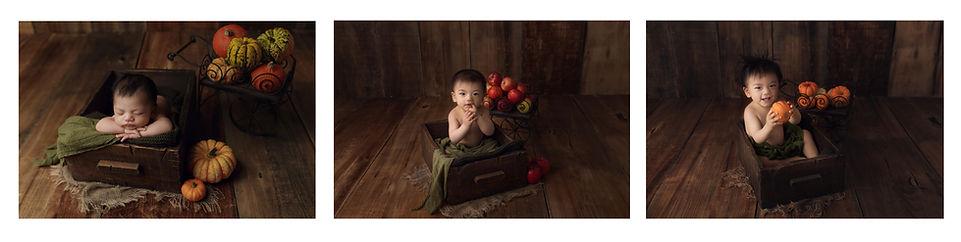 Milestones photogrraphy leicester