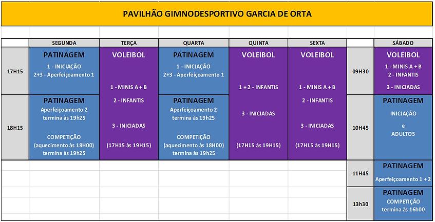 Patinagem + Voleibol (minis, infantis, i