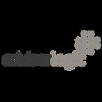 Adviser Logic logo