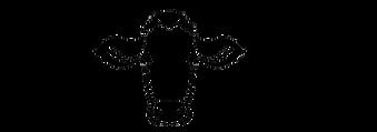 Logo_fertig_pfad.png