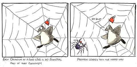 The Adventures of Preston, Preston and the Food Web