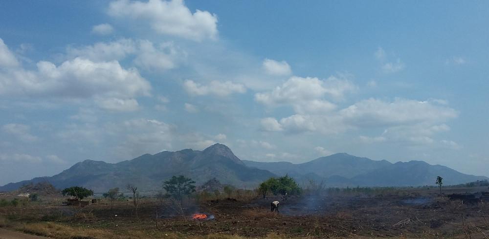 Mozambique landscapes