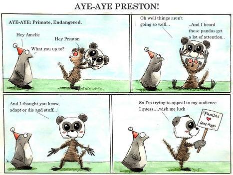 Aye-Aye-Preston