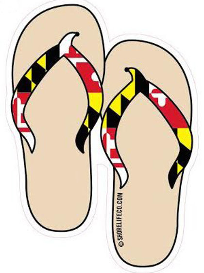 Shore Life Flip Flops
