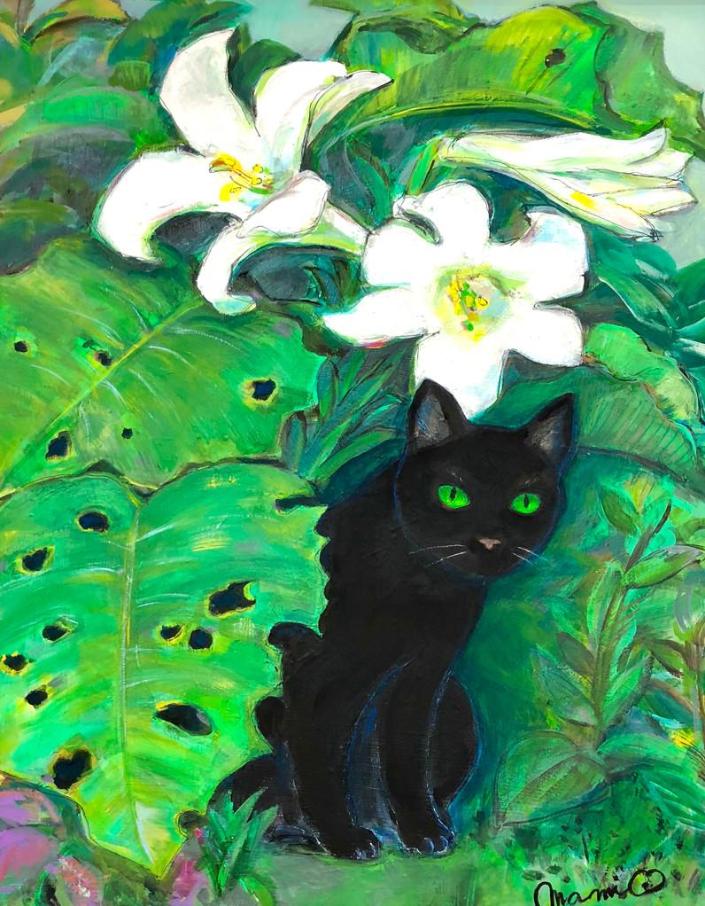 百合と黒猫