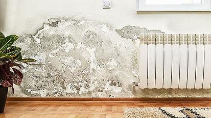 wet walls.jpg