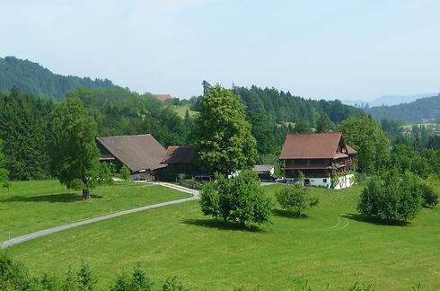 Ehrlihof-Natura-Beef-Schweizer-Fleisch-R