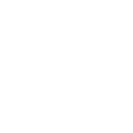 the zizz logo.png
