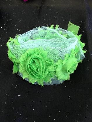 Chiffon Trim Lime (Greens)