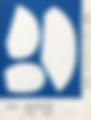 MdN デザイナーズファイル2019