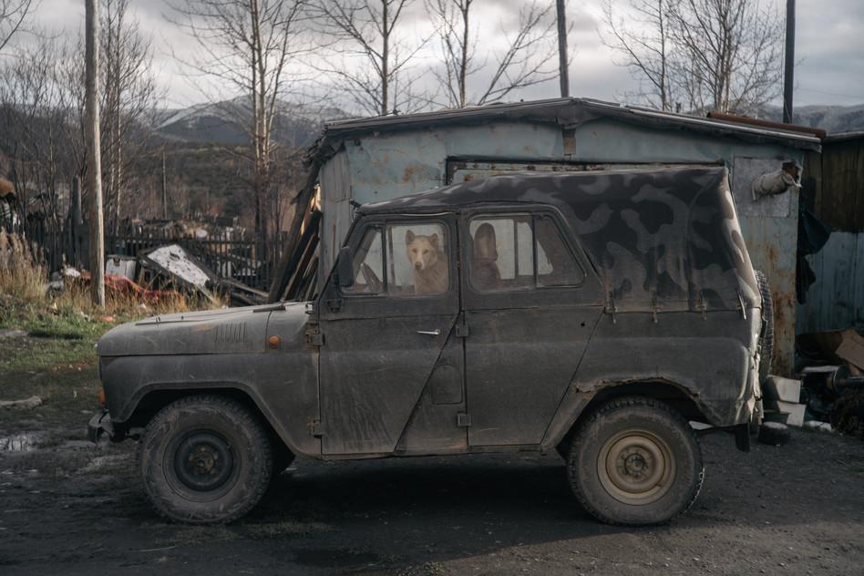 Dog-head driver