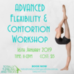 Contortion_Flexibility Workshop.png