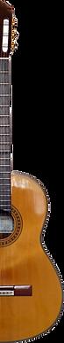 Guitar-rightfacepng.png