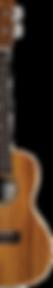 ukulele-halfpng.png