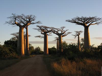 Enseignement de Kaidara - sagesse africaine
