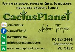 CactusPlanet 2021