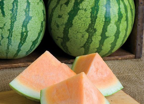 Orange Crisp Watermelon