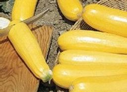 Zucchini Golden