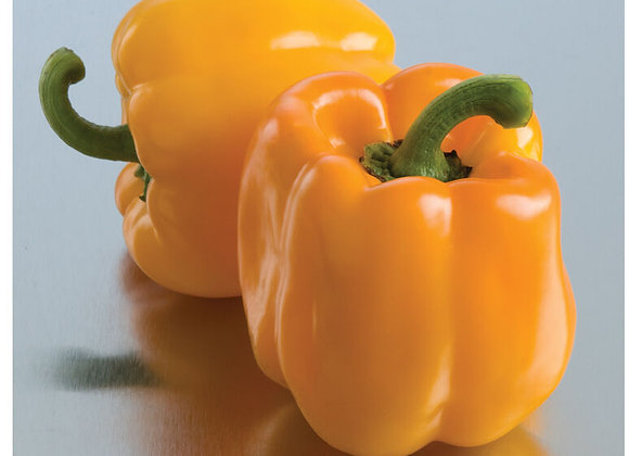 Sweet Sunrise Bell Pepper