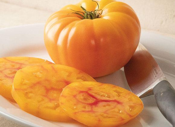 GinFiz Tomato
