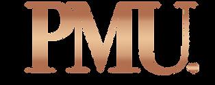 Transparante Logo .png