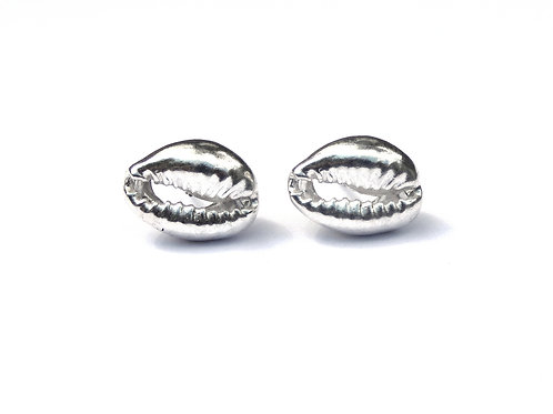 Silver Cowrie Shell Ear Studs