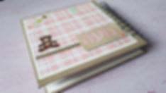 כריכה של אלבום לתינוקת.jpg