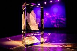 Kulturpreis des Salzlandkreises
