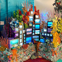 electric reef