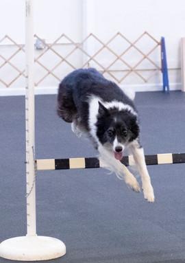 Meg Completes a Successful Jump!