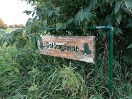 The name of Reyna's farm: Goldengreene