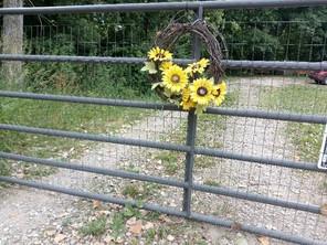 Beauty is found everwhere on Reyna's farm, Goldengreene.