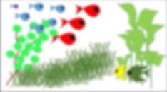 Fish & Plants.jpg