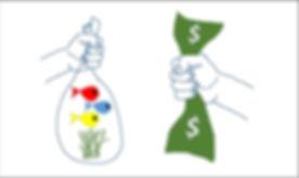 Auction Transaction.jpg