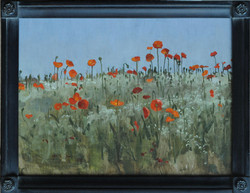 Poppies in the Luxembourg