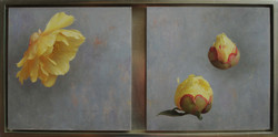 Three Yellow Peonies