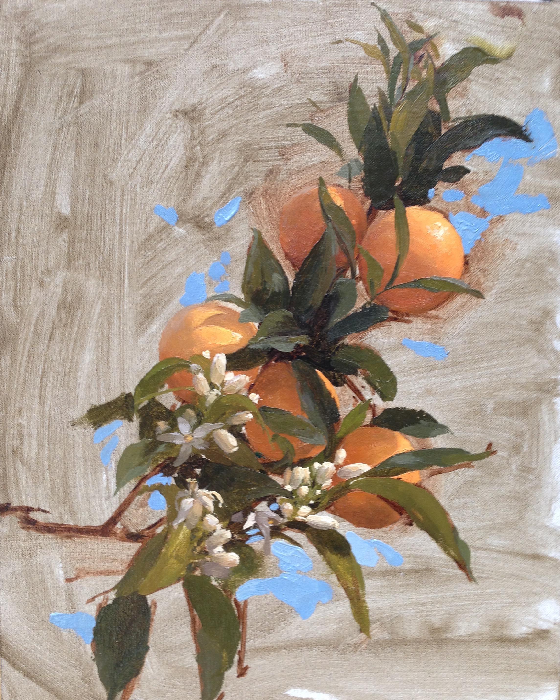 Sorrento Oranges