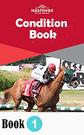2020 Condition Book.jpg