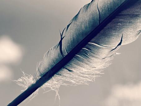 Article : l'équilibre tient à une plume….
