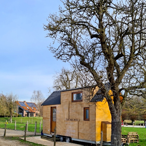 Cabinet buissonnier : Tiny House