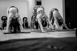 Yoga Navakarana Auprès de mon Arbre