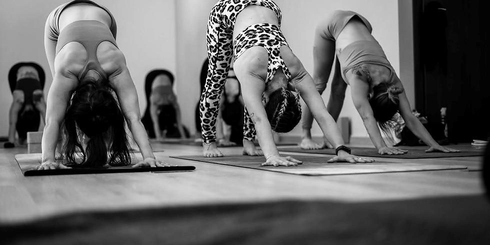Découvrez le Yoga Navakarana