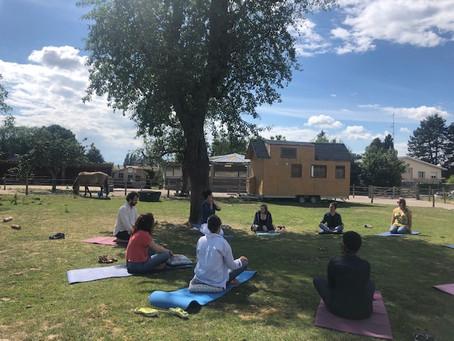 Yoga: cours en ligne