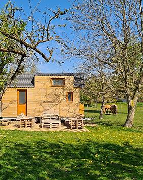 TINY-HOUSE-MAI2021_500X500.jpg
