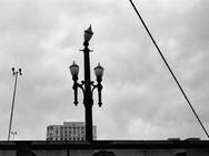 Fotografia de rua16.jpg