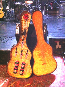★ Mariachi's Guitarcase