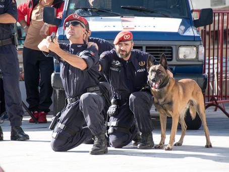 PSP promove ação de atendimento sobre armas e explosivos em vários concelhos do distrito da Guarda