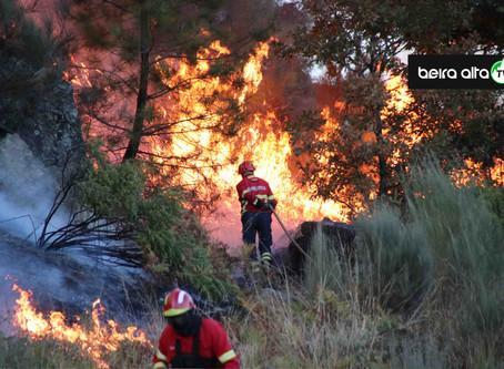 Risco de incêndio coloca distrito da Guarda e mais 9 distritos em alerta especial laranja