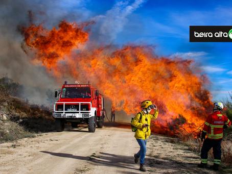 Risco de incêndio: MAI pede «prevenção». Proteção Civil reforça dispositivo com 250 operacionais